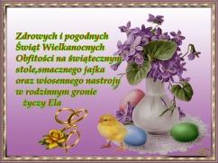 amaz_bartoszyce