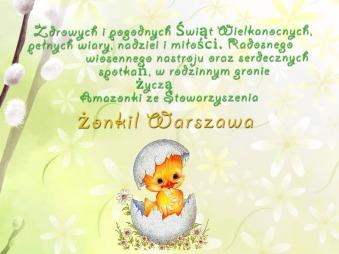 zonkil_w-wa